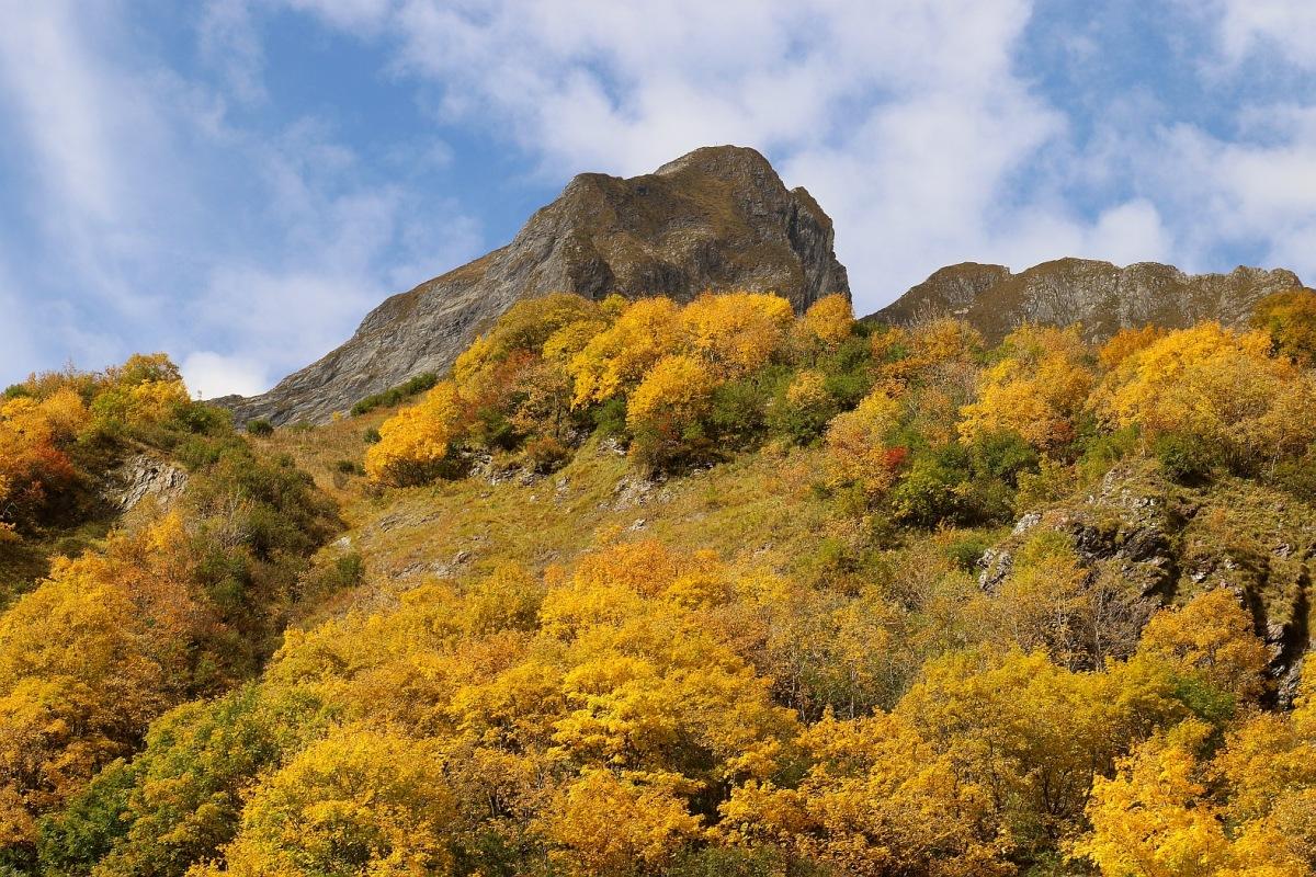 Gelbe Berge